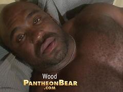 Ebony bear porn
